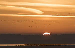 Montier en Der: lever de soleil sur le lac