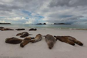 Juillet 2014 - La plage
