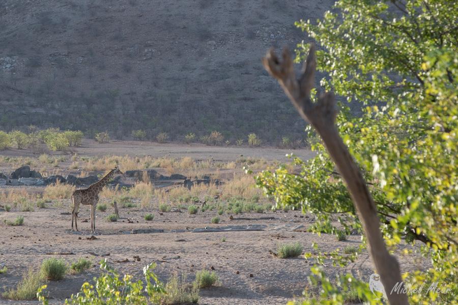 Namibie-269.jpg