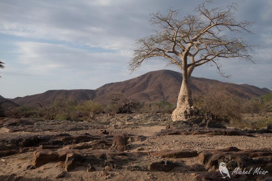Namibie-284.jpg