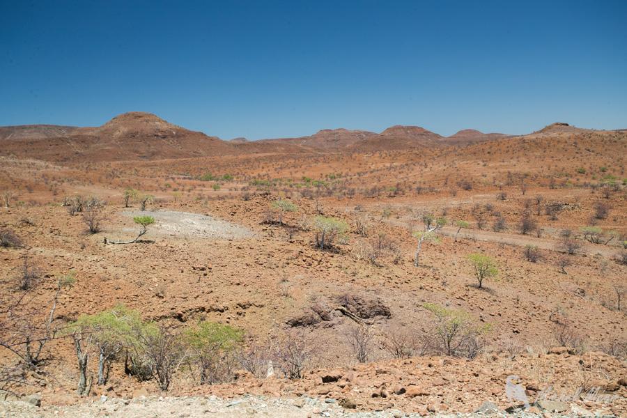 Namibie-388.jpg