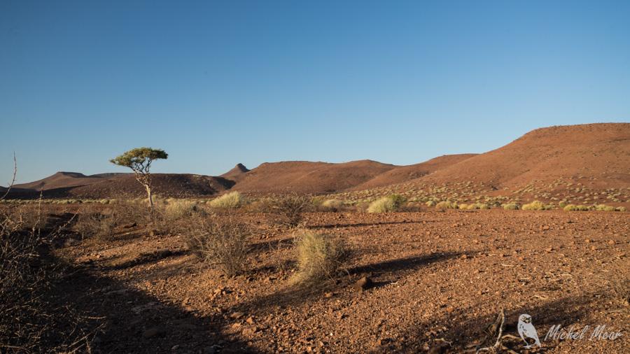 Namibie-396.jpg