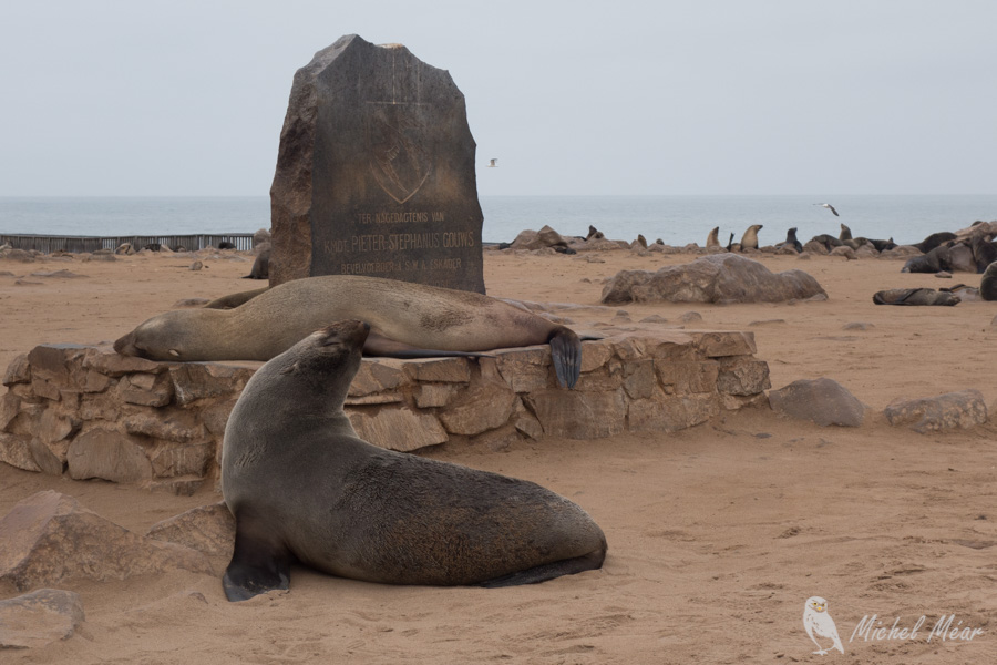 Namibie-433.jpg