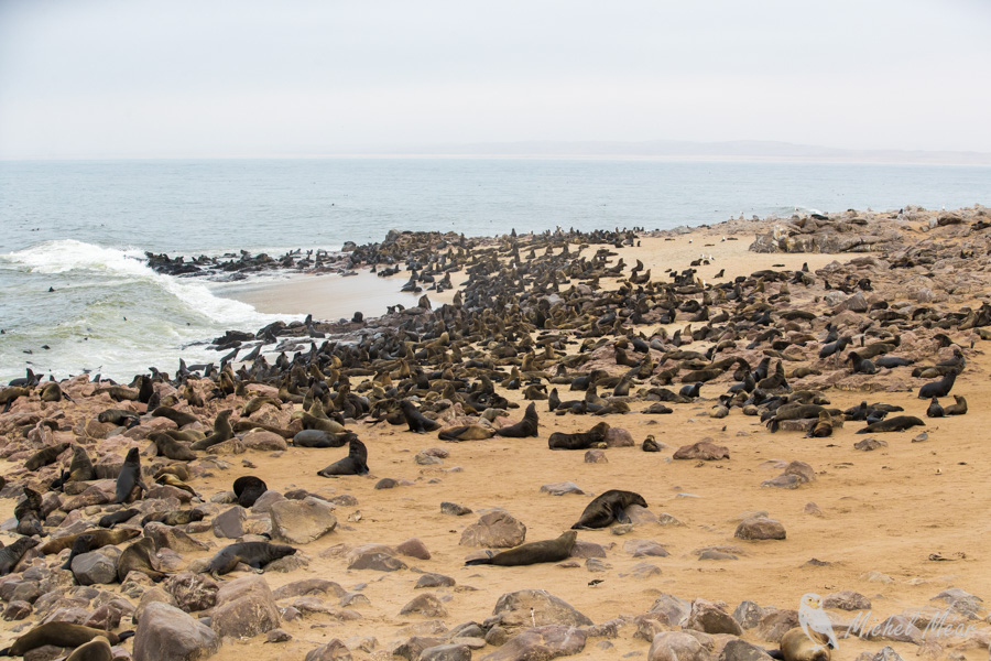 Namibie-437.jpg