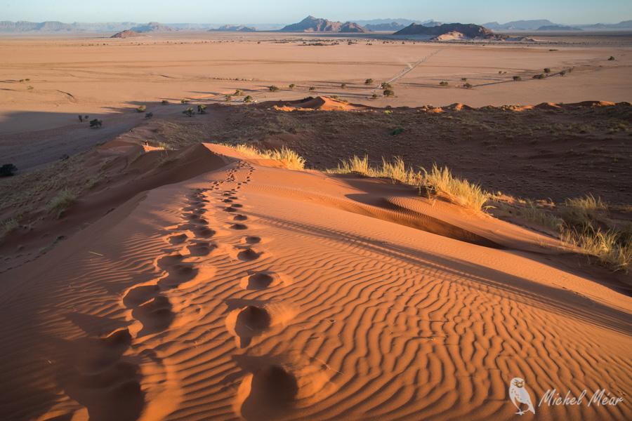 Namibie-569.jpg