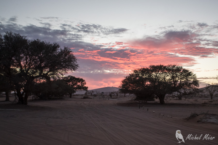 Namibie-572.jpg