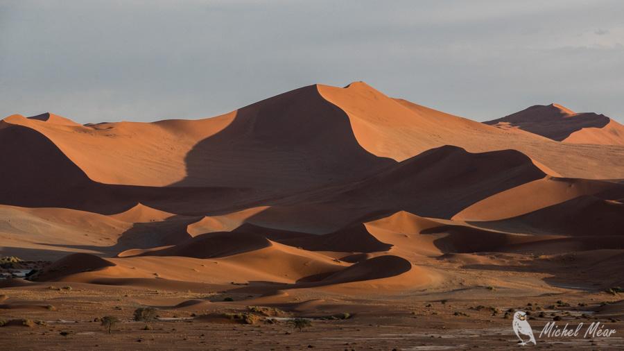 Namibie-576.jpg