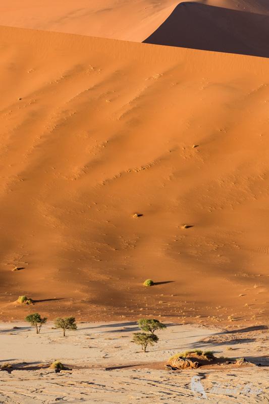 Namibie-579.jpg