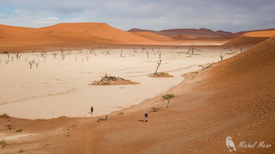 Namibie-594.jpg