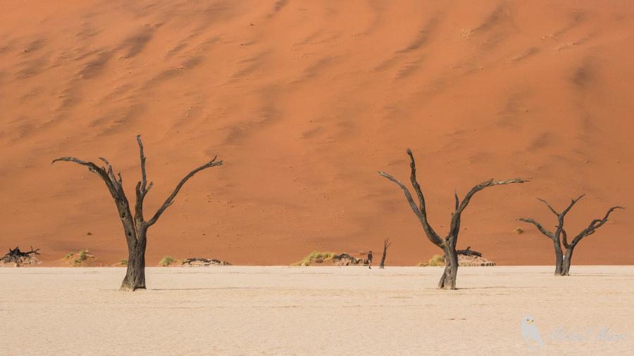 Namibie-597.jpg