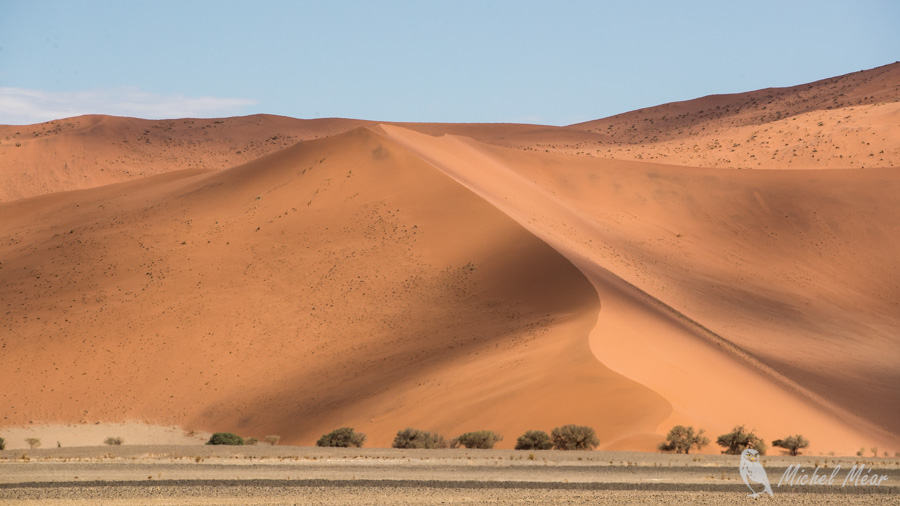 Namibie-603.jpg