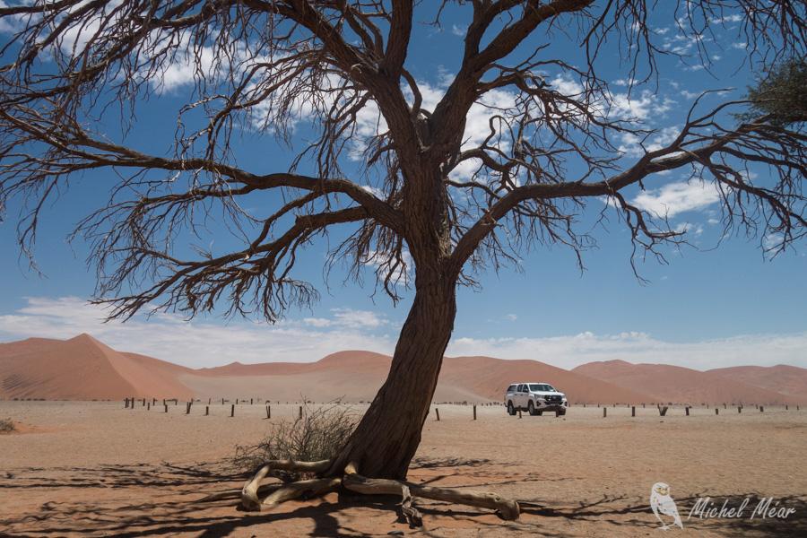 Namibie-611.jpg