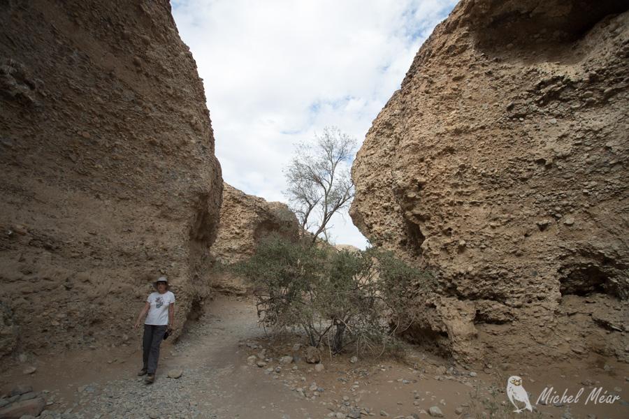 Namibie-614.jpg