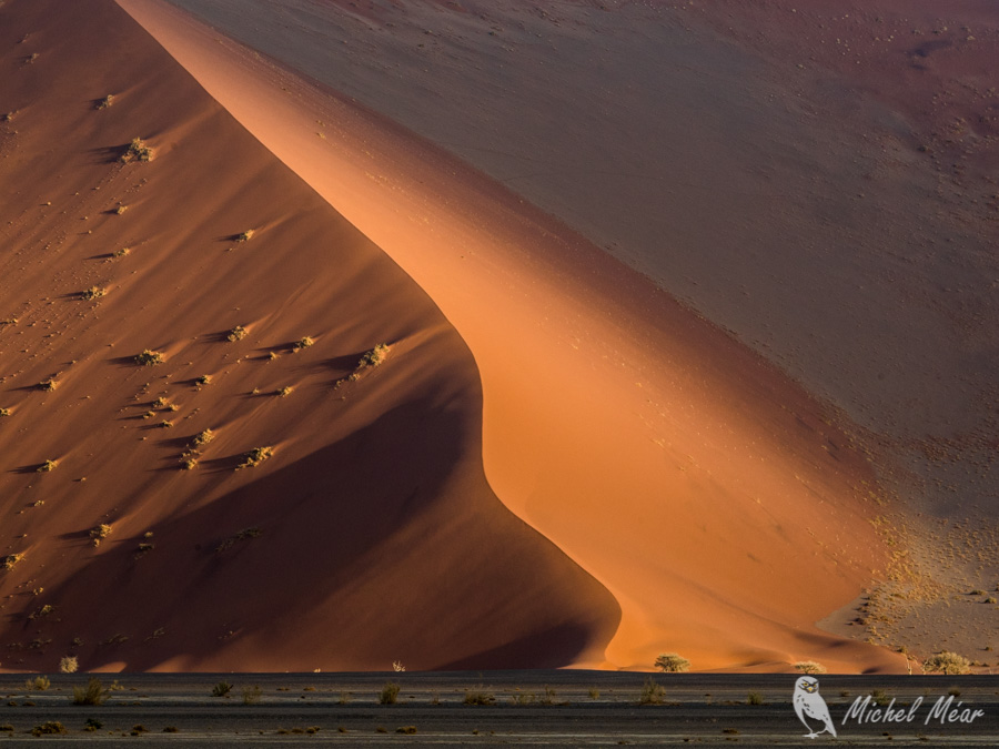 Namibie-627.jpg