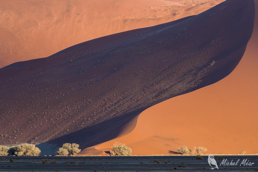 Namibie-628.jpg