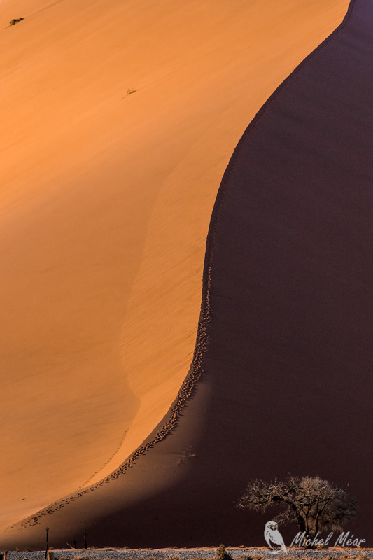 Namibie-629.jpg