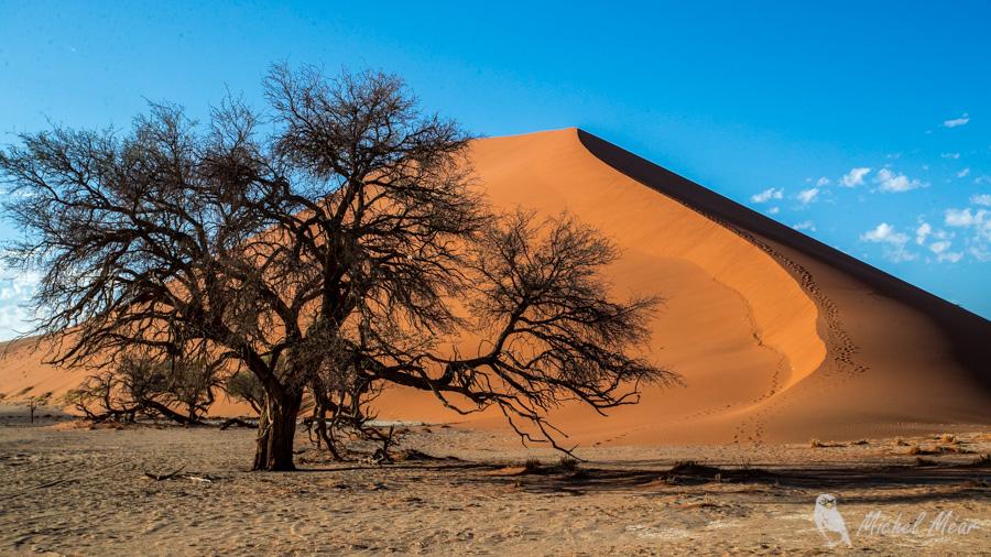 Namibie-631.jpg