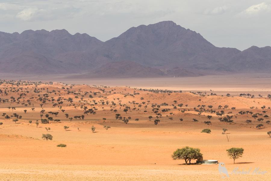 Namibie-642.jpg