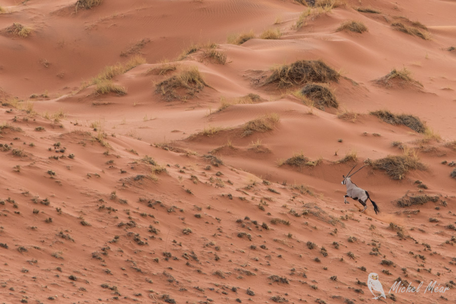 Namibie-644.jpg