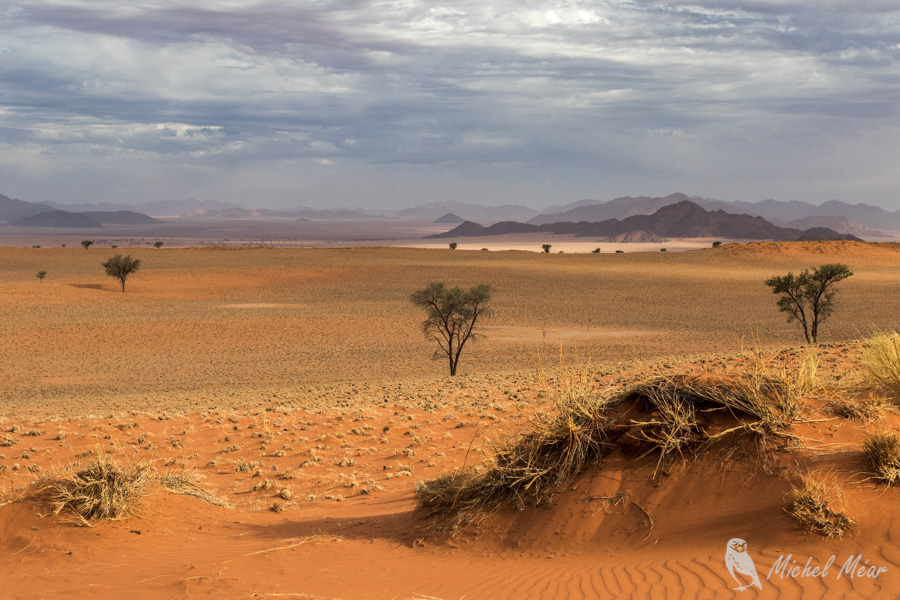 Namibie-647.jpg