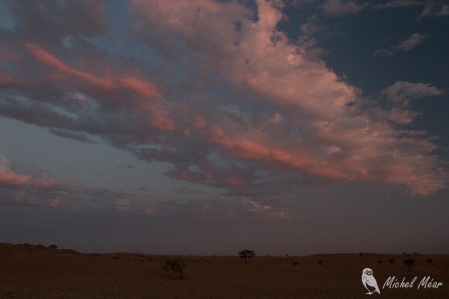 Namibie-657.jpg