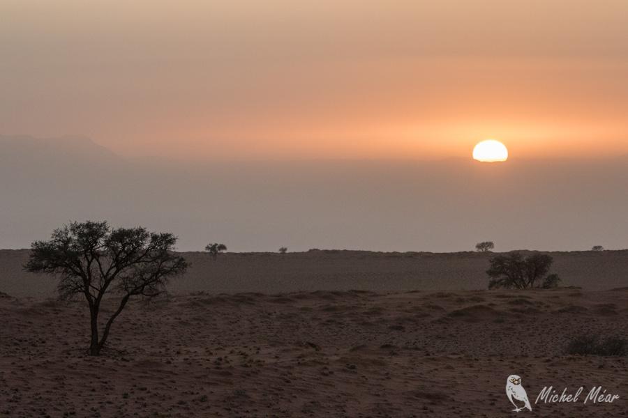 Namibie-659.jpg