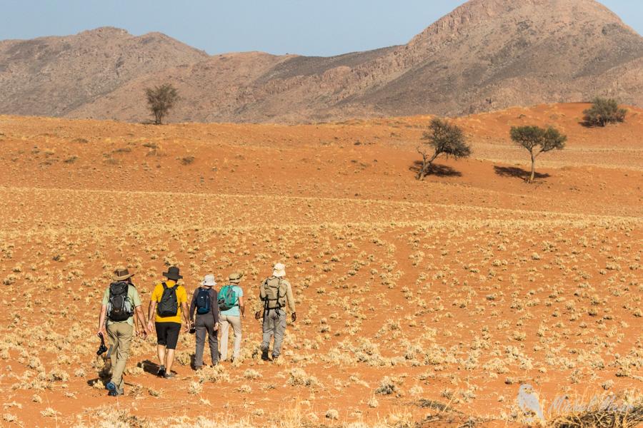 Namibie-665.jpg