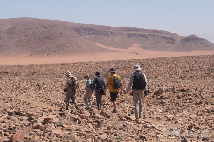 Namibie-677.jpg