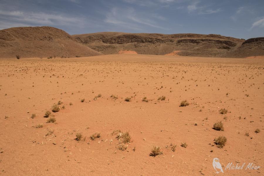 Namibie-678.jpg