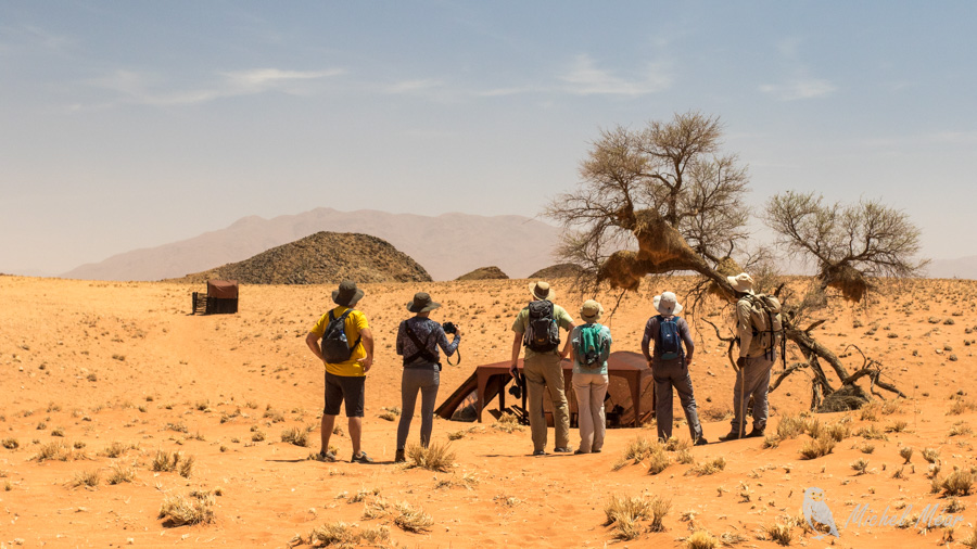 Namibie-679.jpg