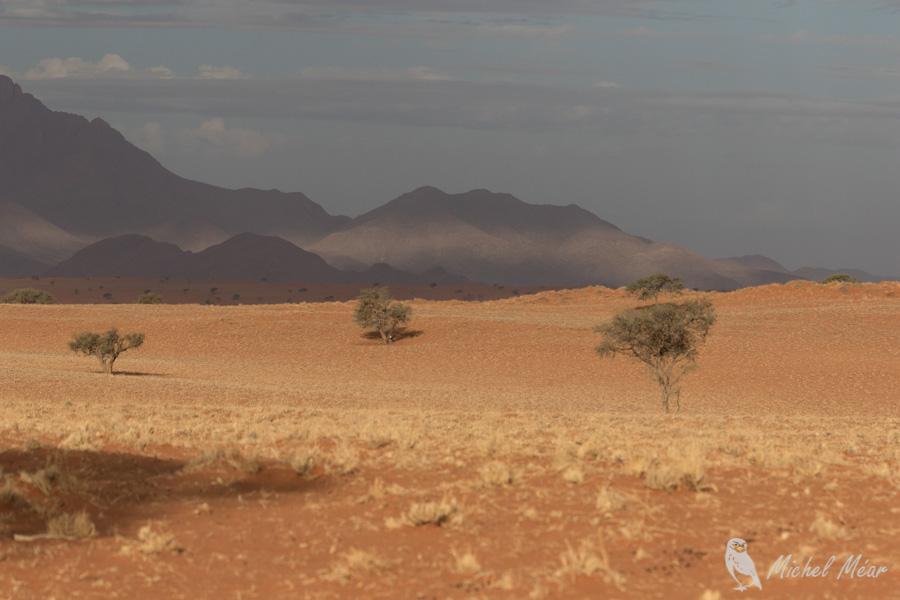 Namibie-690.jpg