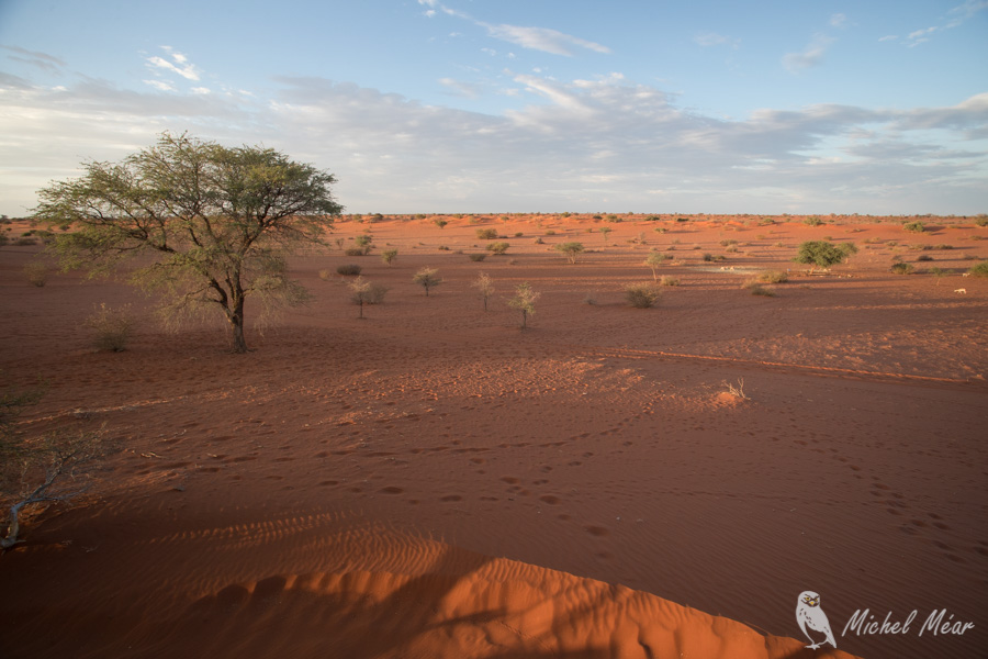 Namibie-711.jpg