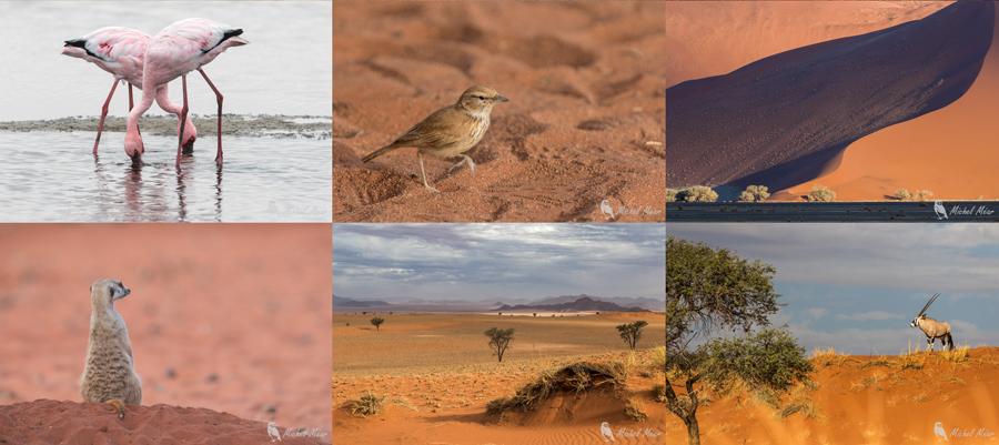 Namibie-fin2.jpg
