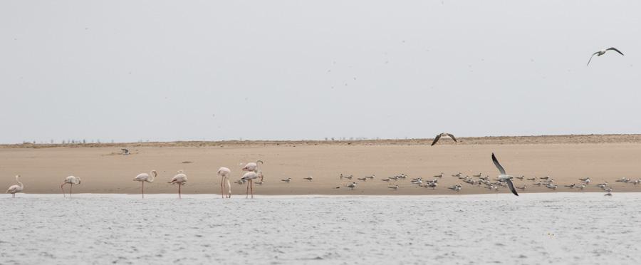 namibie-479.jpg