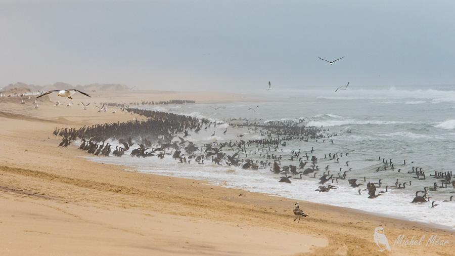 namibie-507.jpg