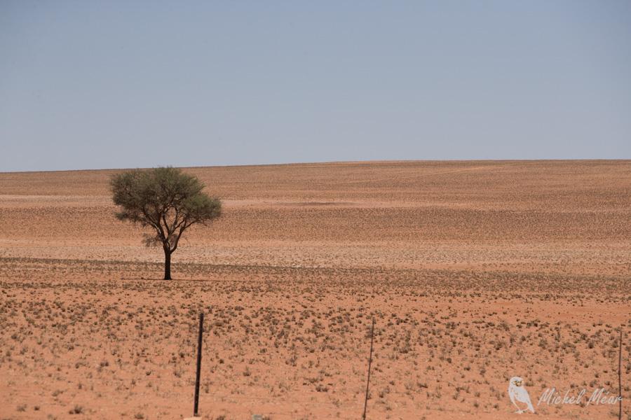 namibie-563.jpg