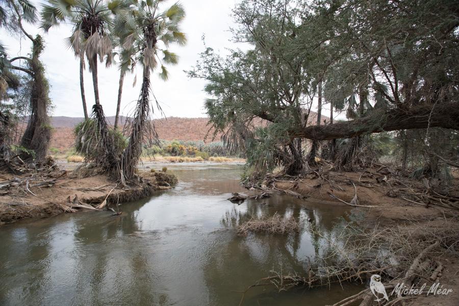 Namibie-303.jpg